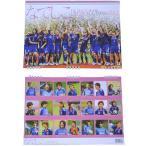 サッカー女子日本代表 なでしこジャパン 2012 カレンダー