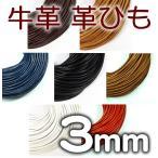 革紐 本革 3mm 丸紐 1m単位 革ひも 切り売り 3.0mm  皮ひも 皮紐 レザーコード 皮革紐