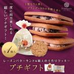 レーズンバターサンド & カントリークッキー (冷)プチギフト お年賀 お菓子 ギフト レーズンサンド 焼き菓子