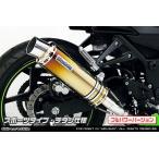 WirusWin ニンジャ Ninja250R(EX250K) スリップオンマフラー スポーツタイプ(フルパワーバージョン)/ウイルズウィン