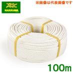 生川 ビニロンS ロープ 3つ打 直径18mm 長さ100m[繊維ロープ 非難グッズ 防災グッズ 防災ロープ 非難ロープ 縄 白色