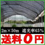 遮光ネット 黒 2m×50m 遮光率65% 農業用遮光ネット [農業資材 農業用品 園芸用品 日よけ 農業用ネット]