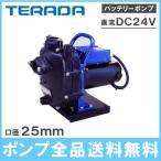 寺田ポンプ 樹脂製モーターポンプ 漁業 農業用ポンプ 海水対応ポンプ CMP24D-200 24V