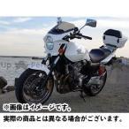 world walk 汎用ビキニカウル DS-01 typeAero(パールサンビームホワイト)