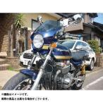 world walk 汎用ビキニカウル DS-01 typeAERO(メタリックノクターンブルー)