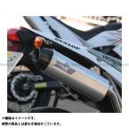 R.S.V. 4st シリーズIII+C サイレンサー TT250R/Raid