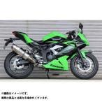 BEET JAPAN NASSERT Evolution Type II スリップオンマフラー サイレンサー:クリアチタン Ninja250SL