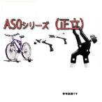 専用アタッチメント テラノ / R50 / 年式H07.09-H14.08 AS0 サイクル 正立 システムキャリア タフレック 用 日産 NISSAN