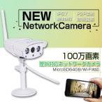 IPカメラ ネットワークカメラ 屋外防水 防犯カメラ 100万画素 赤外線暗視 SDカード録画 VStarcam C7816WIP 送料無料