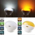 LEDナイトライト LEDセンサーライト 明暗センサー 自動点灯 自動消灯 LED常夜灯 足元灯 寝室や廊下 コンセント差込 オーム電機 白色 橙色