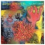【輸入盤】DAVID KILGOUR & THE HEAVY EIGHTS デヴィッド・キルガー&ザ・へヴィ・エイツ/END TIMES UNDONE(CD)