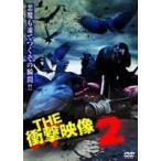 THE 衝撃映像 2(DVD)