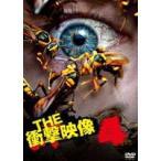 THE 衝撃映像 4(DVD)