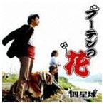 四星球 / フーテンの花 [CD]