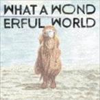 堀込泰行 / What A Wonderful World [CD]