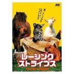 レーシング・ストライプス(DVD)
