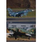 F-2&F-4 デモフライト・スペシャル Vol.4 [DVD]