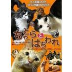 ちゃとらとはちわれ(DVD)