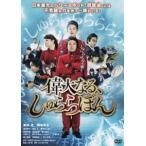 偉大なる、しゅららぼん スタンダード・エディション DVD(DVD)