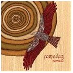THE 9 MILES / SOMEDAY [CD]