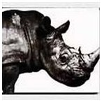Mr.Children/Mr.Children 1992-1995(CD)