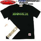ANIMALIA アニマリア 半袖Tシャツ AN16S-TE05 10FEET TAKUMA プレゼント 缶バッジ ハーフ