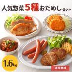 肉 お惣菜 5種 詰め合わせ ハンバーグ ウインナー ソーセージ 豚ロース はらみ ホルモン ローストビーフ 送料無料 プレゼント 2020  国産 豚肉 ギフト 福袋 食品