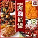 [業務用]肉 福袋 食品 5種 約2,9kg 送料無料 食品 コロナ 応援 支援 冷凍食品 アウトレット 大容量 ローストビーフ ハンバーグ フライドチキン ウインナー