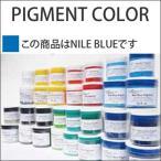 PIGMENT COLOR ピグメント カラー NILE BLUE NILE ブルー 8oz 油性顔料/サーフボード/ペイント/塗料