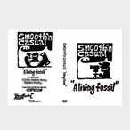 DVD 池田潤 スムースン・カジュアル/サーフィンスタイル/ロングボード/Smooth'n Casual A Living Fossil