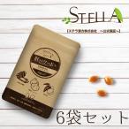 にんにく 牡蠣 サプリ サプリメント 国産 肝パワーEプラス(3粒×15包)6箱 ステラ漢方公式保証