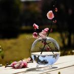 透明なガラスの花のプランター花瓶テラリウムコンテナ家庭菜園ボールの装飾