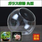 ガラス容器 テラリウム ガラス花瓶 丸型 置物 装飾 ミニチュア 多肉植物鉢 フラワーベース 観葉植物にも 水耕栽培 プレゼント