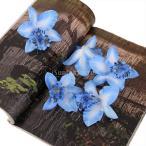 【ノーブランド品】結婚式 ウェディング 髪飾り用 シルク製 造花 デンドロビウム デンドロビューム 8cm (ブルー) 20個