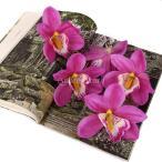 【ノーブランド品】結婚式 ウェディング 髪飾り用 シルク製 造花 デンドロビウム デンドロビューム 11cm (パープル) 20個