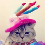 小型犬のペットの猫幸せな誕生日パーティーキャンドルかわいいキャップ帽子、カスタマーコスプレ