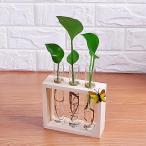 花植物の装飾用の木製スタンドでのクリスタルガラス試験管の花瓶