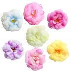 10個 5.5cm 人工造花 シミュレーション シルクキャメリア フラワーヘッド 結婚式  - マルチカラー, 説明したように