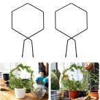 登山植物用2x植物トレリストレリス植物つる茎サポートワイヤーB