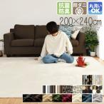 ラグ おしゃれ 洗える 北欧 3畳 安い ラグマット カーペット フランネルラグ ラグマット ホットカーペットカバー 送料無料 長方形 フランネル バリエ