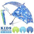 傘 キッズ 透明窓付 海の動物柄 長傘 雨傘 ワンタッチ
