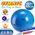 ギムニク バランスボール 65cm ブルー+ダブルアクションポンプ セット