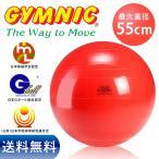 ギムニク バランスボール 55cm レッド(赤色)