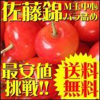 さくらんぼ 佐藤錦 露地栽培 M玉バラ詰め 1kg 送料無料 まかない 訳あり