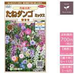 花の種 実咲花9351 花絵の具たねダンゴミックス(秋まき)