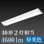 オーム電機 OHM 照明 06-0526 LEDベースライト 40W2灯相当 / 4600lm / 昼光色 LT-B4000C2-D 送料無料