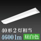 オーム電機 OHM 照明 06-0525 LEDベースライト 40W2灯相当 / 4600lm / 昼白色  LT-B4000C2-N 送料無料