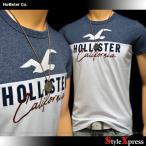 ホリスター Hollister Tシャツ メンズ