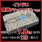 ブラックタイガー エビ 冷凍 無頭 業務用  1.8kg 9〜10cm 26/30