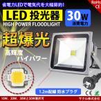 LED投光器 30W 昼光色 ACプラグ付 3M配線 防水 長寿命 看板灯 集魚灯 作業灯に/家庭用コンセントでOK